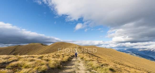 Female hiker on hiking trail — Stock Photo