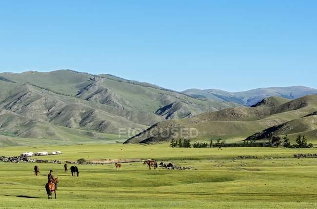 Nomade nel paesaggio arido in Valle dell'Orkhon, Parco nazionale di Khangai Nuruu, Mongolia — Foto stock