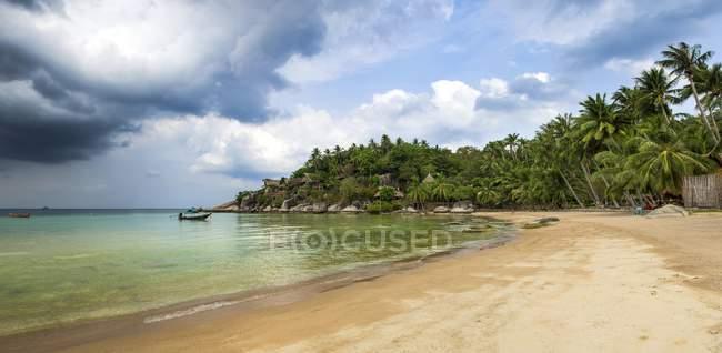 Піщані пляжі з пальмами на бірюзове море, пляжу та, Ко Тао, Сіамській, Таїланду, Азії — стокове фото