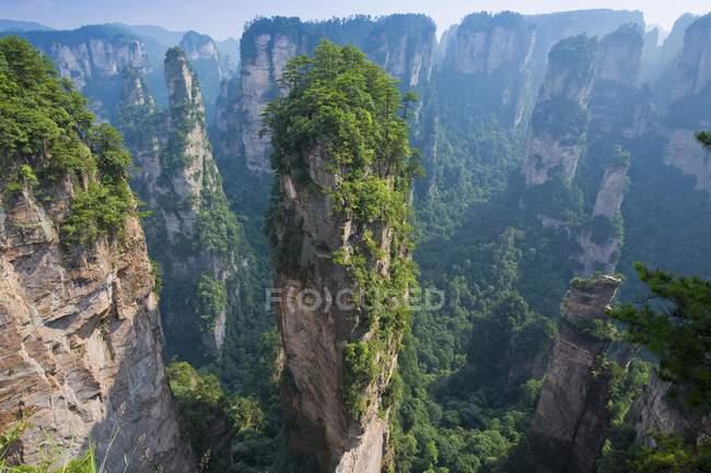 Аллилуйя песчаниковые горы Чжанцзяцзе, Wulingyuan Национальный парк, Китай, Азия — стоковое фото