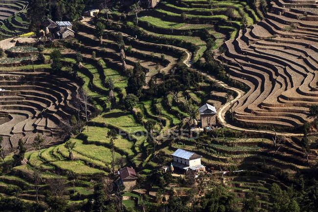 Luftaufnahme der Terrasse Feldanbau in Nagarkot, Nepal, Asien — Stockfoto