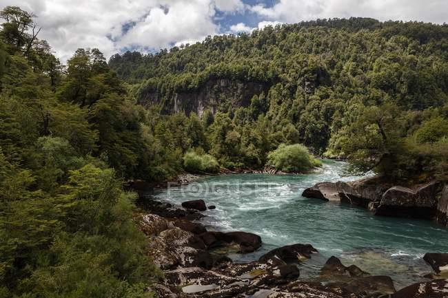 Fiume di montagna turchese Futalefu nella vegetazione fitta, Parco Nazionale Los Alerces, Patagonia, Cile, Sud America — Foto stock
