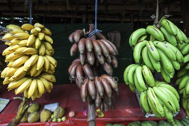 Market fruit stall with various bananas — Stock Photo