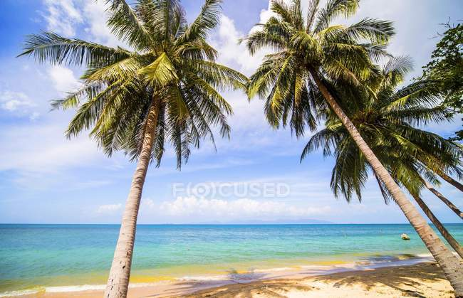 Гарний вид на море і піщані пляжі Чонг Мон курорту, Ко Самуї, Таїланд, Азії — стокове фото