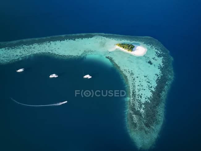 Пташиного польоту безлюдний острів з пальмові дерева і кораблі, Арі-Атолл, Мальдіви — стокове фото