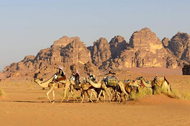 Bedouins with camels in caravan at Wadi Rum, Jordan, Asia — Stock Photo