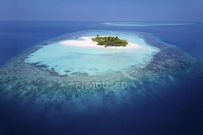 Нежилих Палм-Айленд з піщаним пляжем і коралових рифів, Арі-Атолл, Мальдіви — стокове фото