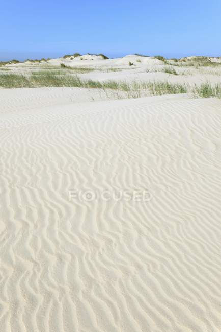 Dune landscape with wavelike ripple structure in white sand. — Stock Photo