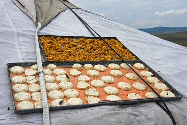 Traditional Mongolian roasted quark Eezgii cheese dried on roof of yurt in Mongolia — Stock Photo