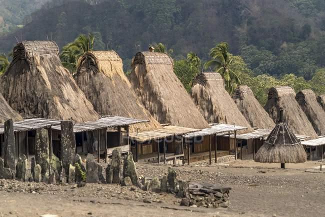 Traditionellen strohgedeckten Holzhäuser von Guru Sina Dorf in Bajawa, Insel Flores, Indonesien, Asien — Stockfoto