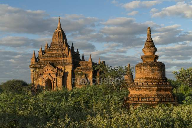Temples and pagodas in forest in Bagan, Mandalay, Myanmar, Asia — Stock Photo