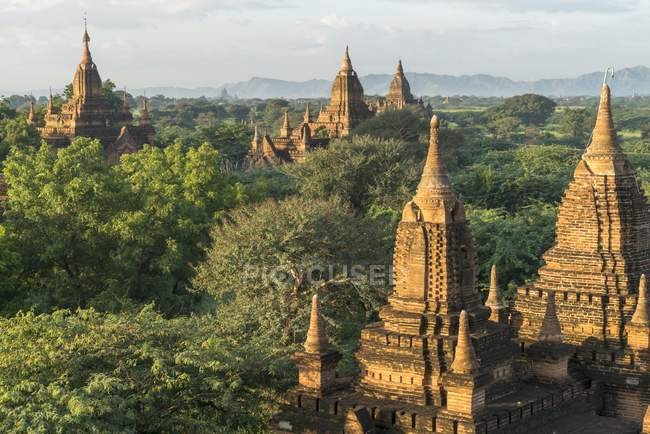 Temples and pagodas in woodland of Bagan, Mandalay, Myanmar, Asia — Stock Photo