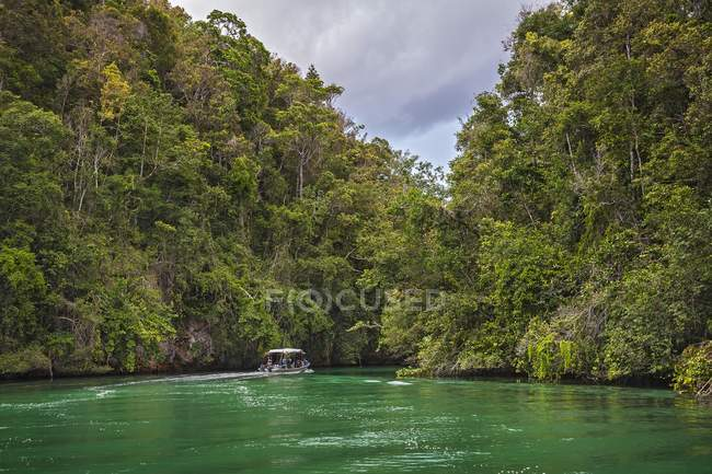 Forested limestone cliffs Dampier Strait in Western New Guinea, Indonesia, Asia — Stock Photo