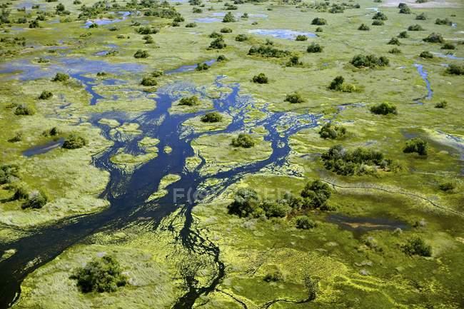 Aerial view of swampy green water of Okavango Delta, Botswana, Africa — Stockfoto