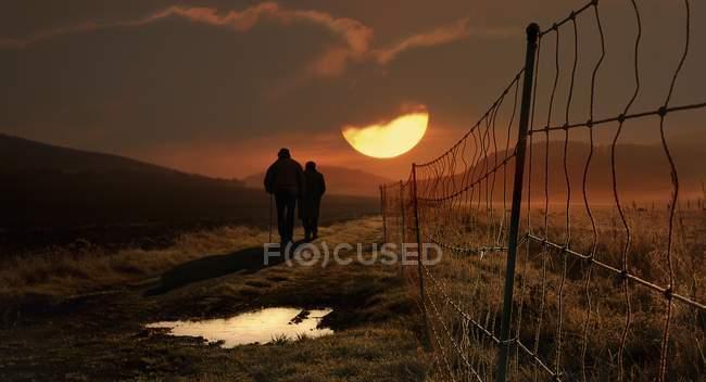 Rear view of couple walking alongside meadow fence toward sunset — Stock Photo