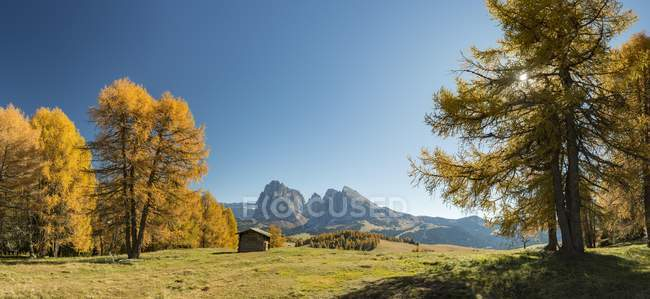 Autumnal Alps and wooden alpine hut in Dolomites, South Tyrol, Italy, Europe — стоковое фото