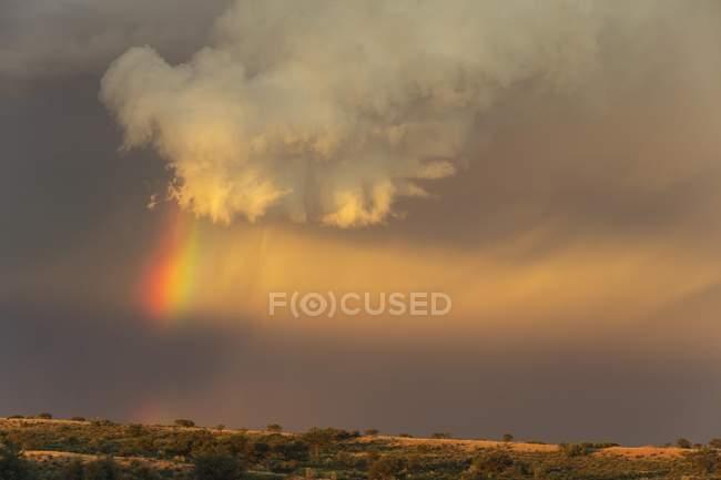 Evening thunderstorm with rainbow above sand dune, Kalahari Desert, Botswana, Africa — Stock Photo