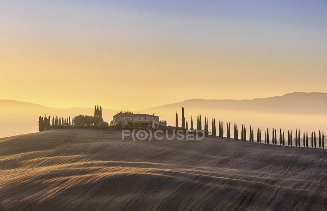Tuscany landscape with cypresses and farmstead at sunrise, Val dOrcia, Tuscany, Italy, Europe — Stock Photo
