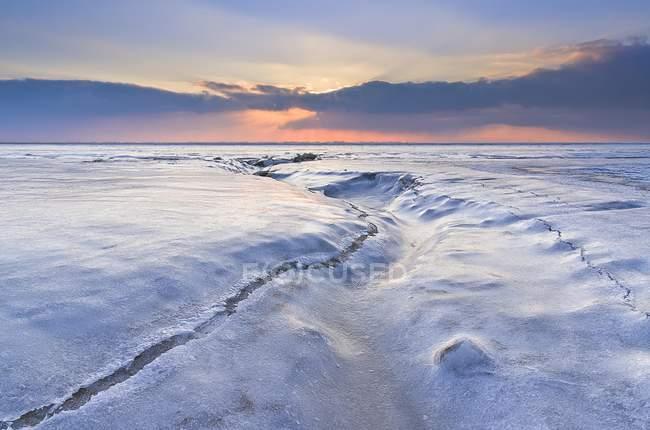Resultado de imagen de Imágenes del Norte helado