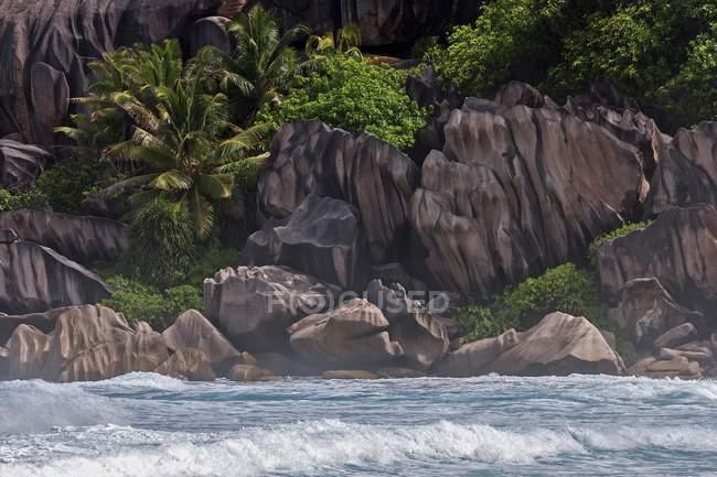 Sea shore with granite rocks and palm trees, Grand Anse, La Digue Island, Seychelles, Africa — стокове фото