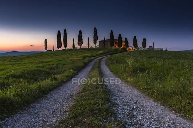 Paisaje toscano con grainfield en el atardecer, San Quirico dorcia, Val dorcia, Toscana, Italia, Europa - foto de stock