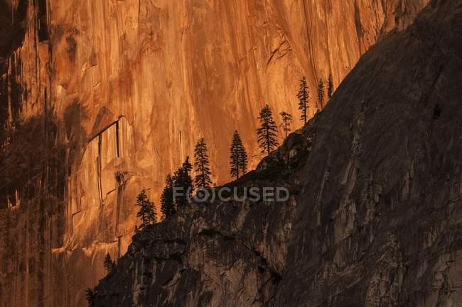 Half Dome northwest rock face illuminated by setting sun, evening light, Yosemite National Park, USA, North America — Stock Photo