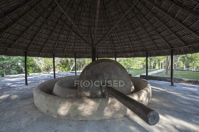 Ancient millstone in Las Terrazas, Artemisa Province, Cuba, Central America — Stock Photo