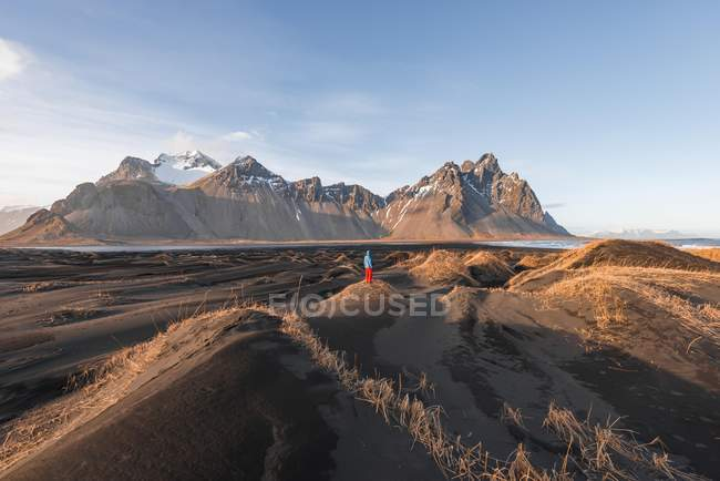 Evening atmosphere at lava beach with traveler in black sand dunes covered with grass in mountain range Klifatindur, Austurland, Iceland, Europe. — Stock Photo