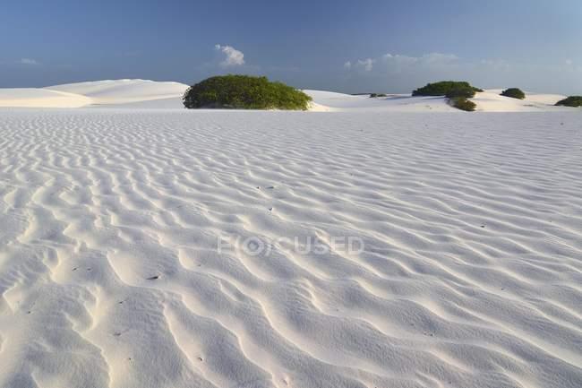 Пустынный ландшафт свободное Maranhenses национального парка в Маранхао, Бразилия, Южная Америка — стоковое фото