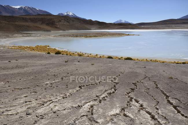 Laguna Hedionda with erosion structures by shore at Uyuni, Lipez, Bolivia, South America - foto de stock