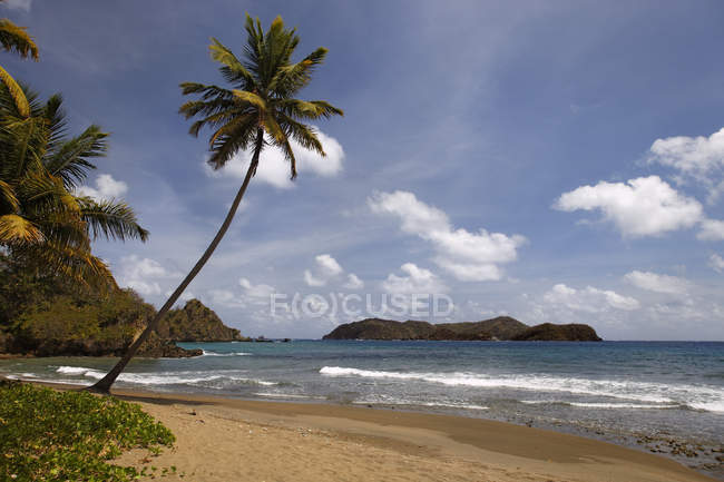 Sunset at Man-o-war Bay of Charlotteville, Tobago, Trinidad and Tobago, North America — Stockfoto