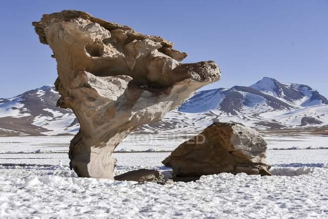 Arbol de piedra albero di pietra nella neve, deserto di Siloli, Potosí, Bolivia, Sud America — Foto stock