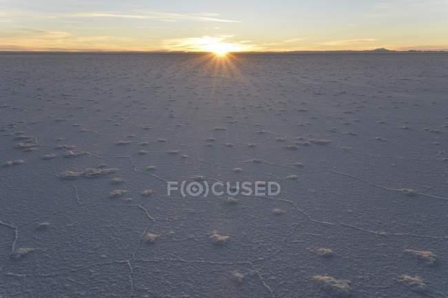 Waben Sie-Struktur der Salzkruste im Salar de Uyuni Salz flach im Morgengrauen, Altiplano, Bolivien, Südamerika — Stockfoto