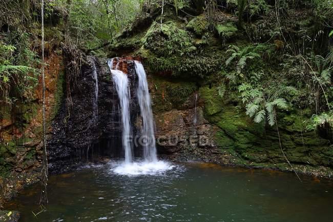 Waterfall Salto Kanymby in organic reserve Tati Yupi, Hernandarias, Alto Parana, Paraguay, South America — стоковое фото