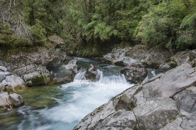 Chanleufu river rapids in Puyehue National Park, Los Lagos Region, Chile, South America — Stock Photo