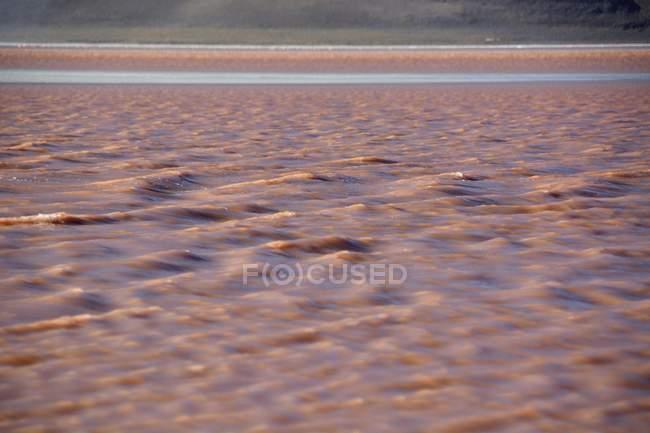 Laguna Colorada mit roten Wasser verursacht durch Algen in Uyuni, Lipez, Bolivien, Südamerika — Stockfoto
