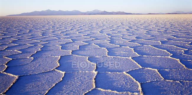 Waben Sie-Struktur der Salzkruste im Salar de Uyuni Salz flach bei Sonnenaufgang, Altiplano, Bolivien, Südamerika — Stockfoto