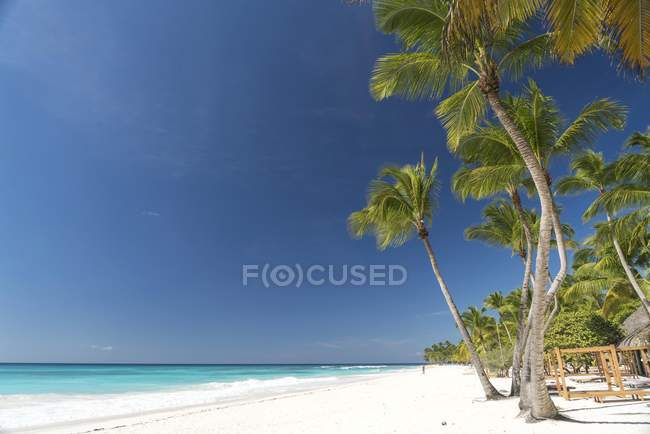 Tropical resort with palm trees and turquoise sea, Parque Nacional del Este in Dominican Republic — Stock Photo