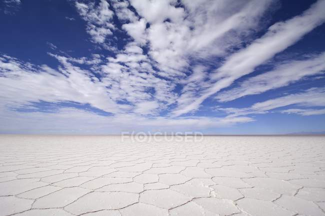 Estructura de la costra de sal en Salar de Uyuni Salar, Altiplano, Bolivia, América del sur de nido de abeja - foto de stock