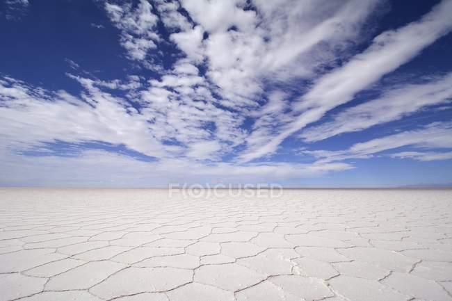 Waben Sie-Struktur der Salzkruste im Salar de Uyuni Salz flach, Altiplano, Bolivien, Südamerika — Stockfoto