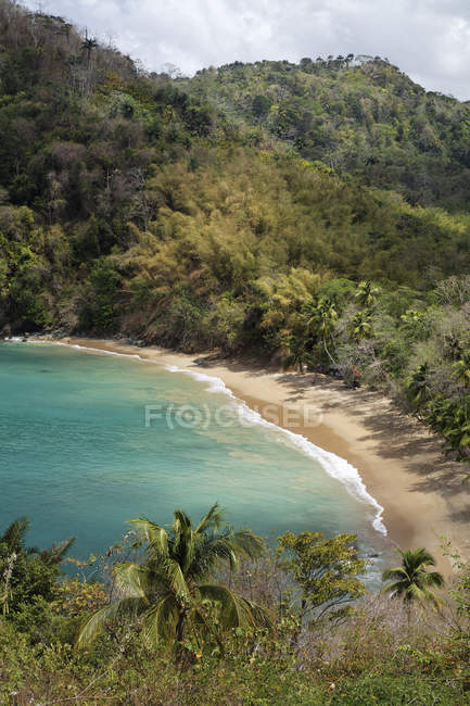 Sandy beach of Parlatuvier Bay, Tobago, Trinidad and Tobago, North America — Foto stock
