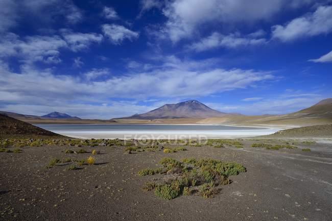 Typical barren landscape on Laguna Hedionda, Nor Lipez province, Potosi department, Bolivia, South America — стоковое фото