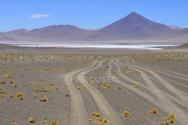 Fahrzeug verfolgt, Laguna Colorada, Altiplano, Sur Lipez, Bolivien, Südamerika — Stockfoto