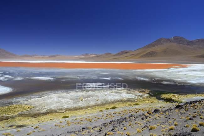 Play of colors of Laguna Colorada water, Altiplano, Sur Lipez, Bolivia, South America — Foto stock