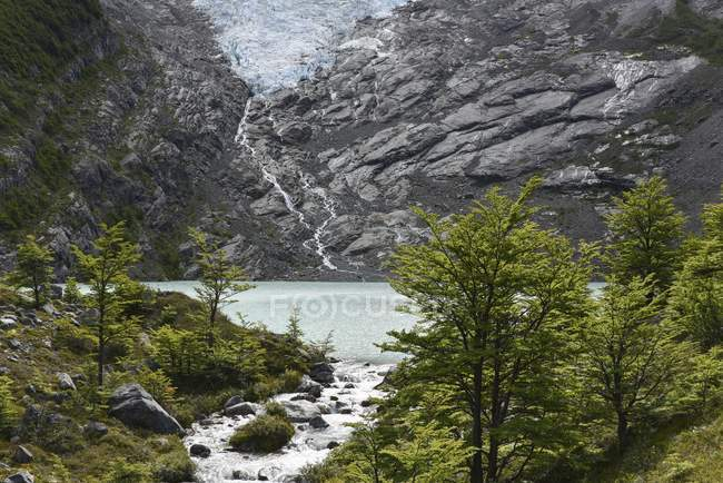 Melting glacier with lake and forest, Lago del Desierto, El Chalten, Patagonia, Argentina, South America — Stock Photo