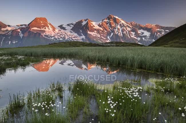 Pics montagneux qui reflète dans petit étang au lever du soleil, Hohe Dock, Parc National de Hohe Tauern, Land de Salzbourg, Autriche, Europe — Photo de stock