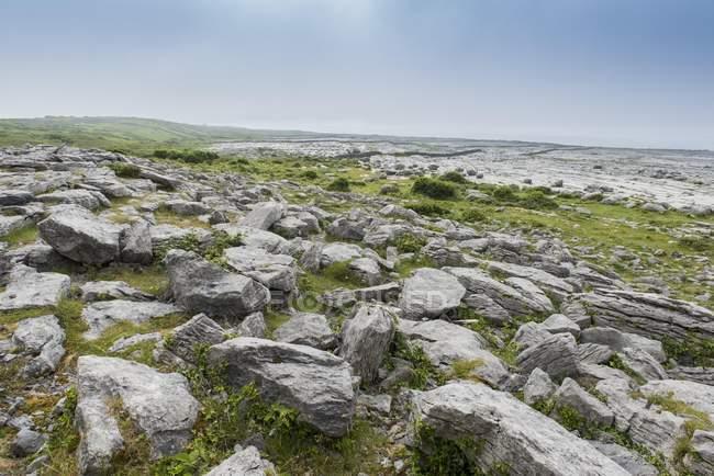 Burren karst landscape, Ballyvaughan, County Clare, Republic of Ireland — Photo de stock