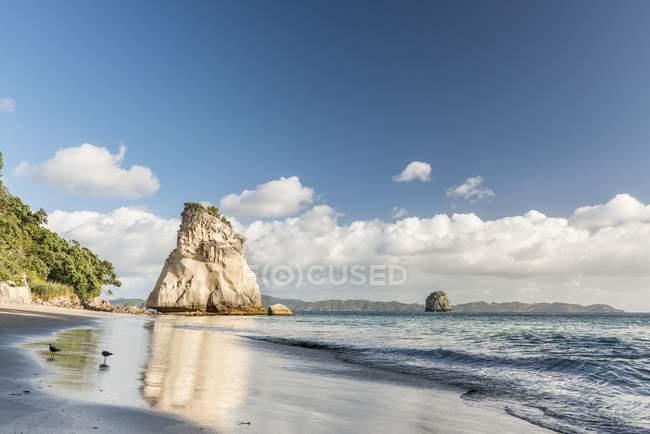 Пляжі біля собору Cove, ртуть Bay, Coromandel півострів Північна острові, Нової Зеландії, Океанія — стокове фото