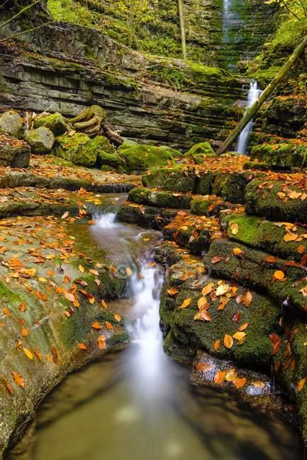 Gebirgsbach Taugl mit Felsen mit Herbstblättern bedeckt, Tauglbachschlucht, Tauglbachklamm, Tennengau, Salzburger Land, Österreich, Europa — Stockfoto