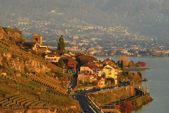 Aerial view of autumnal vineyards near Lake Geneva and village Saint-Saphorin, Lavaux, Canton of Vaud, Switzerland, Europe — Stock Photo